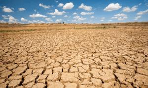 Dampak Pemanasan Global