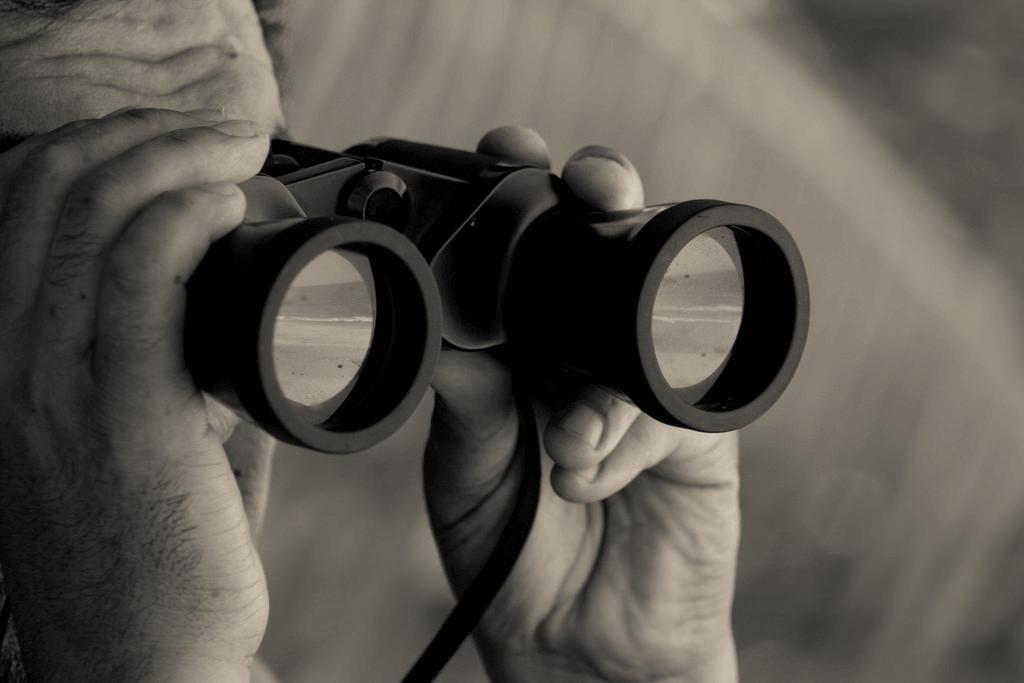 5 Contoh Teks Laporan Hasil Observasi Hewan dan Struktur