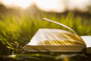 Contoh Teks Eksplanasi Hubungan Sosial dan Budaya