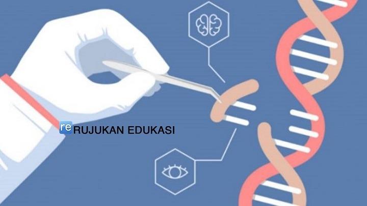 Pengertian Genetika Adalah